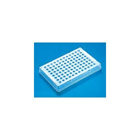 PCR-96 plate, skirted ,thermo-fast 25pcs