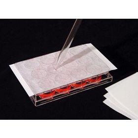 AeraSeal pour plaques PCR 96 puits Stérile