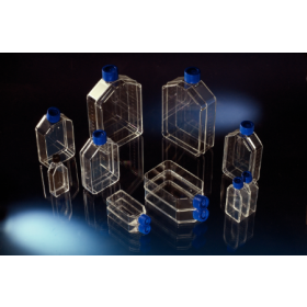Flask TC Nunclon 25cm² col droit + cape ventilée